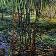 Rushes with Duckweed 2015